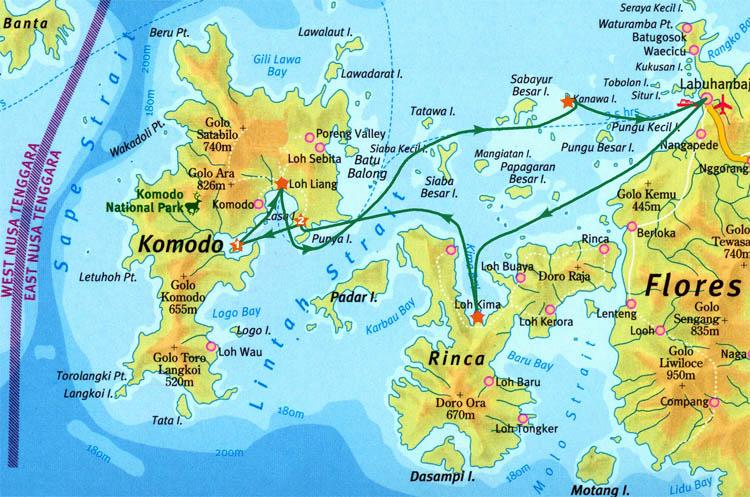 Ринча и Комодо (Rinca and Komodo)