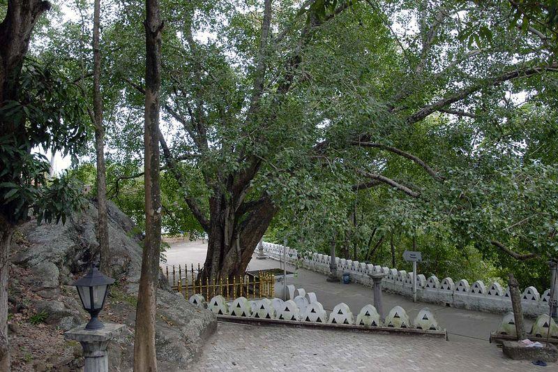 Риди Вихара (Ridi Vihara, Ridi Raja Maha Viharaya)