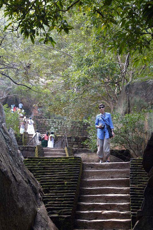 «Львиная скала» Сигирия (Sigiriya Lion Rock)