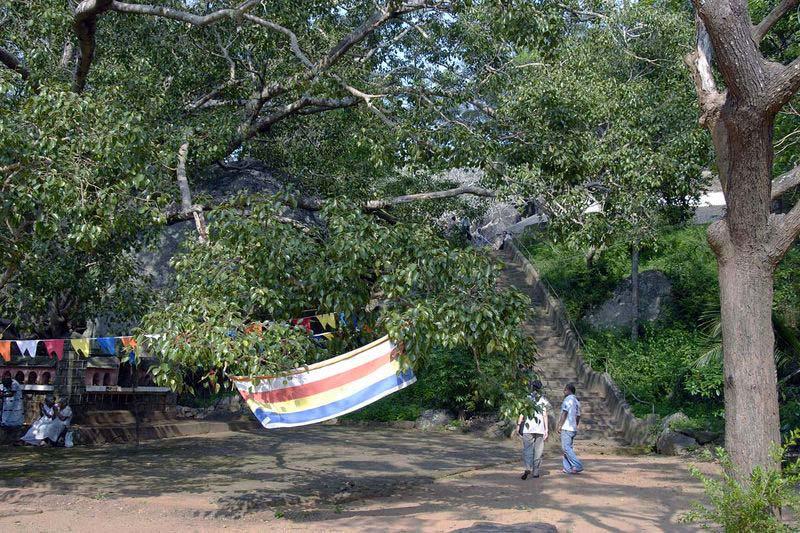 Пидурангала (Pidurangala)